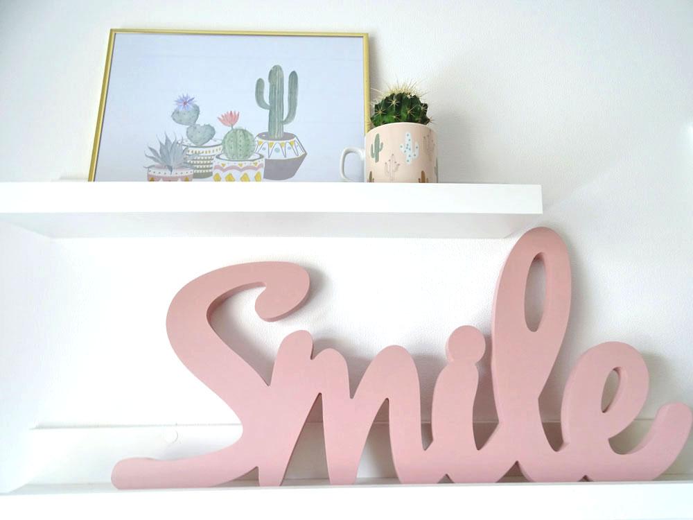 Smile Kaktus DIY selbstgemacht