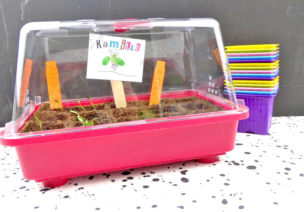 Pflanzenstecker DIY selbstgemacht